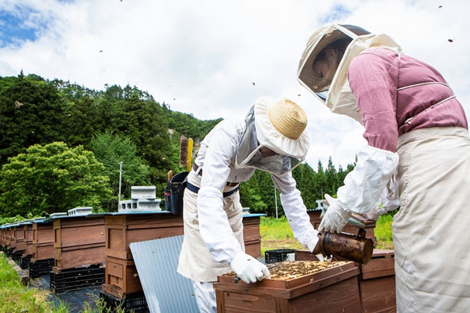 にしわが発 黄金の恵み!甘〜く香るハチミツ特集 にしわが通信 Vol.60