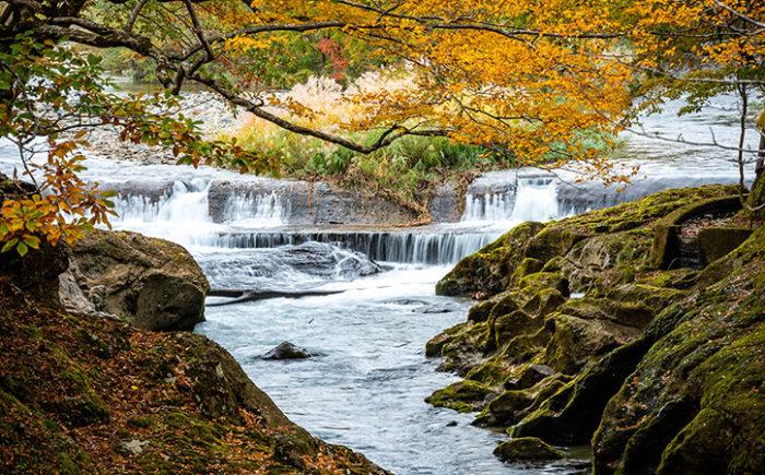 和賀川の中州に浮かぶ「弁天島」は、絶景紅葉スポットです